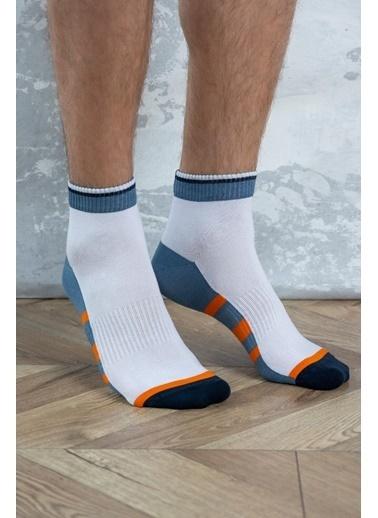 Katia & Bony Spor  Erkek Step Çorap -Beyaz /Gri Beyaz